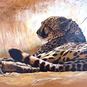 """Lying Cheetah"""